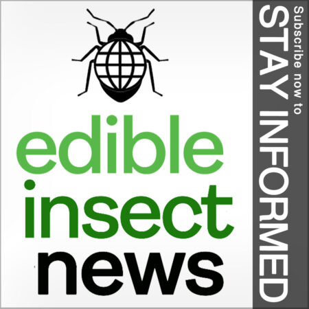 Edible Insect News