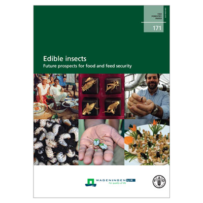 FAO Report on Edible Insects