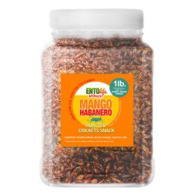 Mango Habanero Flavored Crickets