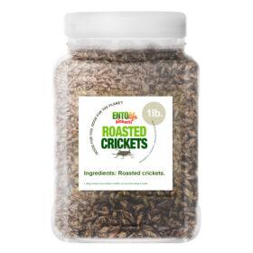 Plain Flavored Edible Crickets